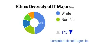 Information Technology Majors in WA Ethnic Diversity Statistics
