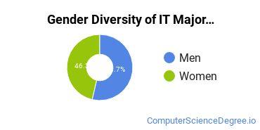 Information Technology Majors in WA Gender Diversity Statistics