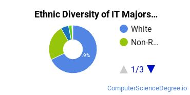 Information Technology Majors in WI Ethnic Diversity Statistics