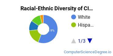 Racial-Ethnic Diversity of CIS Undergraduate Certificate Students