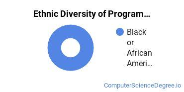 Computer Programming Majors in AL Ethnic Diversity Statistics