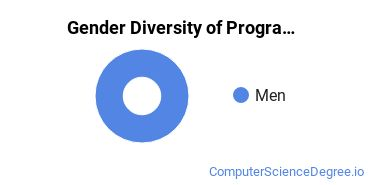 Computer Programming Majors in AL Gender Diversity Statistics