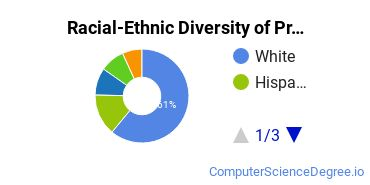 Racial-Ethnic Diversity of Programming Associate's Degree Students