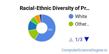 Racial-Ethnic Diversity of Programming Students with Bachelor's Degrees