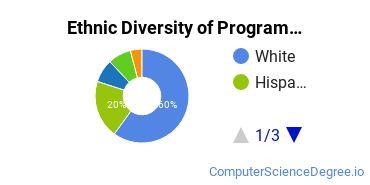 Computer Programming Majors in CT Ethnic Diversity Statistics