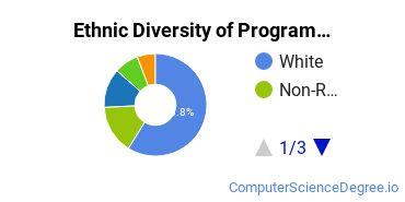 Computer Programming Majors in IL Ethnic Diversity Statistics