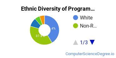 Computer Programming Majors in KS Ethnic Diversity Statistics