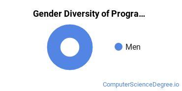Computer Programming Majors in ME Gender Diversity Statistics