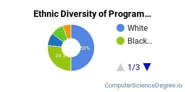 Computer Programming Majors in MD Ethnic Diversity Statistics