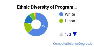 Computer Programming Majors in MA Ethnic Diversity Statistics