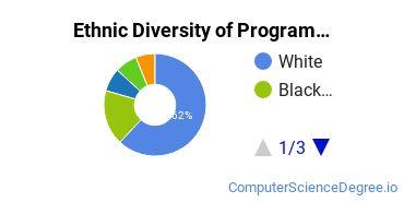 Computer Programming Majors in MN Ethnic Diversity Statistics