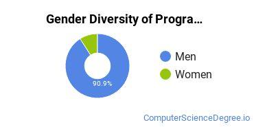 Computer Programming Majors in MT Gender Diversity Statistics