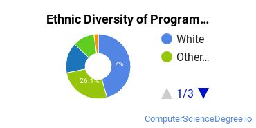 Computer Programming Majors in NE Ethnic Diversity Statistics