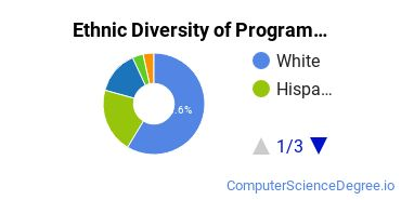 Computer Programming Majors in NV Ethnic Diversity Statistics