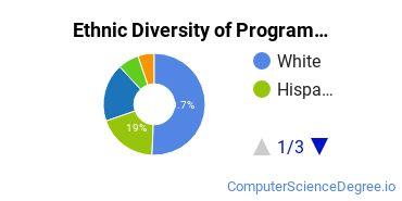 Computer Programming Majors in NJ Ethnic Diversity Statistics