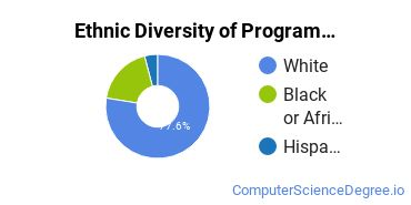 Computer Programming Majors in NC Ethnic Diversity Statistics