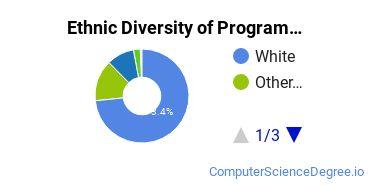Computer Programming Majors in OR Ethnic Diversity Statistics