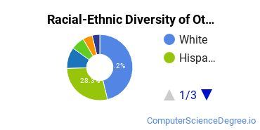 Racial-Ethnic Diversity of Other Computer Programming Students with Bachelor's Degrees