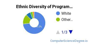 Computer Programming Majors in PA Ethnic Diversity Statistics