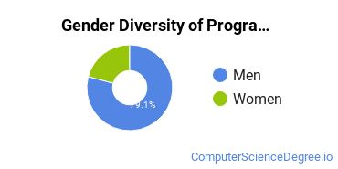 Computer Programming Majors in PA Gender Diversity Statistics