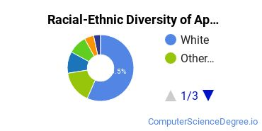 Racial-Ethnic Diversity of App Specific Computer Programming Students with Bachelor's Degrees