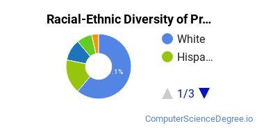 Racial-Ethnic Diversity of Programming Undergraduate Certificate Students