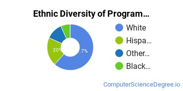 Computer Programming Majors in VT Ethnic Diversity Statistics