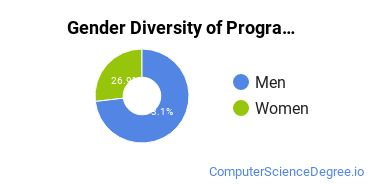 Computer Programming Majors in VT Gender Diversity Statistics