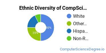 Computer Science Majors in AK Ethnic Diversity Statistics