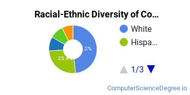 Racial-Ethnic Diversity of CompSci Basic Certificate Students
