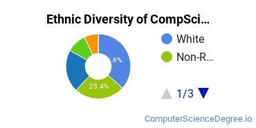 Computer Science Majors in DE Ethnic Diversity Statistics