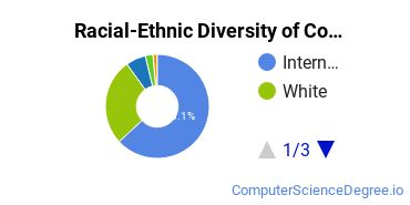 Racial-Ethnic Diversity of CompSci Doctor's Degree Students