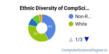 Computer Science Majors in IL Ethnic Diversity Statistics