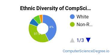 Computer Science Majors in MA Ethnic Diversity Statistics