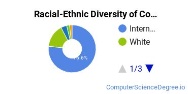 Racial-Ethnic Diversity of CompSci Master's Degree Students