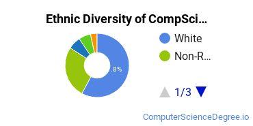 Computer Science Majors in MN Ethnic Diversity Statistics