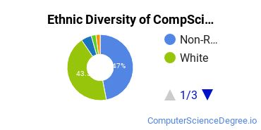 Computer Science Majors in MO Ethnic Diversity Statistics
