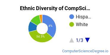Computer Science Majors in NM Ethnic Diversity Statistics