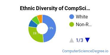 Computer Science Majors in NC Ethnic Diversity Statistics