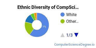 Computer Science Majors in OK Ethnic Diversity Statistics