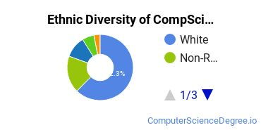 Computer Science Majors in TN Ethnic Diversity Statistics
