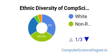 Computer Science Majors in TX Ethnic Diversity Statistics