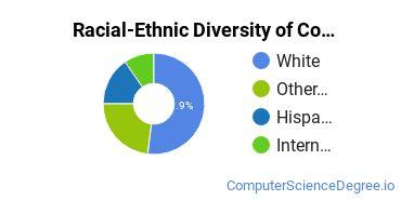 Racial-Ethnic Diversity of CompSci Undergraduate Certificate Students