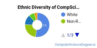 Computer Science Majors in WA Ethnic Diversity Statistics