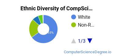 Computer Science Majors in WI Ethnic Diversity Statistics