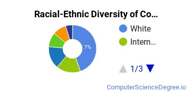 Racial-Ethnic Diversity of Computer Software Students with Bachelor's Degrees