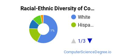 Racial-Ethnic Diversity of Computer Software Basic Certificate Students