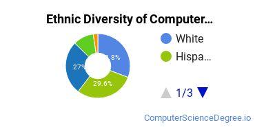 Computer Graphics Majors in CA Ethnic Diversity Statistics