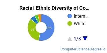 Racial-Ethnic Diversity of Computer Software Master's Degree Students