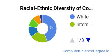 Racial-Ethnic Diversity of Computer Software and Media Applications Students with Bachelor's Degrees